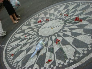 Strawberry field
